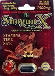 Shogun X